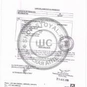VILITRA® сертификат 2